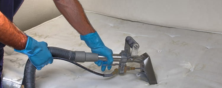 Best Mattress Cleaning Harrison
